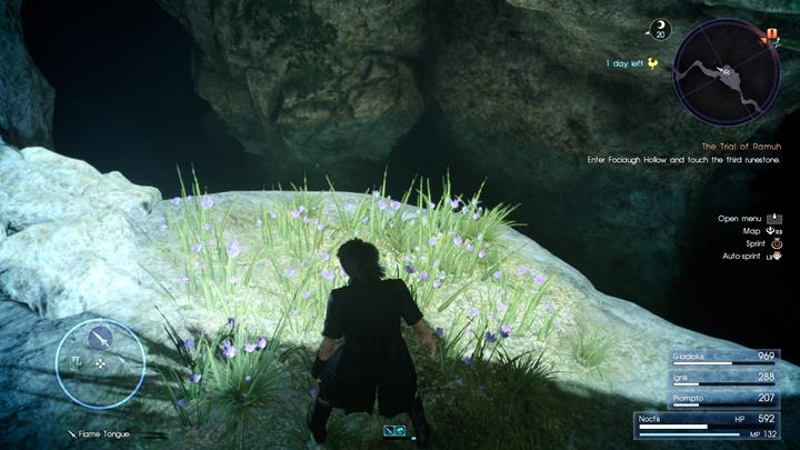 Theres an ascension coin hidden in the grass. - Chapter 5 - Dark Clouds | Main storyline - Main storyline - Final Fantasy XV Game Guide