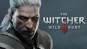 The Witcher 3: Wild Hunt game guide.