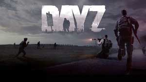 DayZ Game Guide