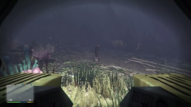 The poor girl can be found on the very bottom of the ocean. - Dead woman - Murder Mystery - Grand Theft Auto V Game Guide