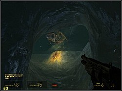 There you'll have to deal with antlions and barnacles, which hang at the ceiling and try to get you with their tongue - To the White Forest p. II - Walkthrough - Half-Life 2: Episode Two - Game Guide and Walkthrough