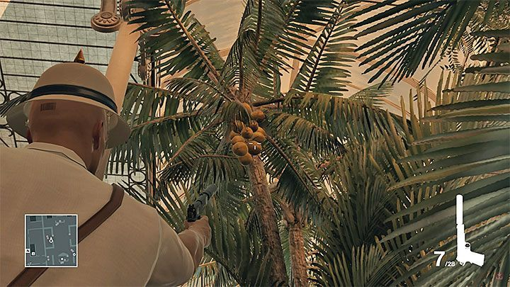 One of the coconuts that can be shot down. - Hitman Legacy Trophies - Achievements - Bangkok - Hitman Legacy - Hitman 2 Guide