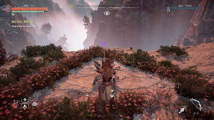 The quickest way to get to the flower is to use the ropes near Rosts house - Metal Flowers | Collectibles - Collections - Horizon Zero Dawn Game Guide