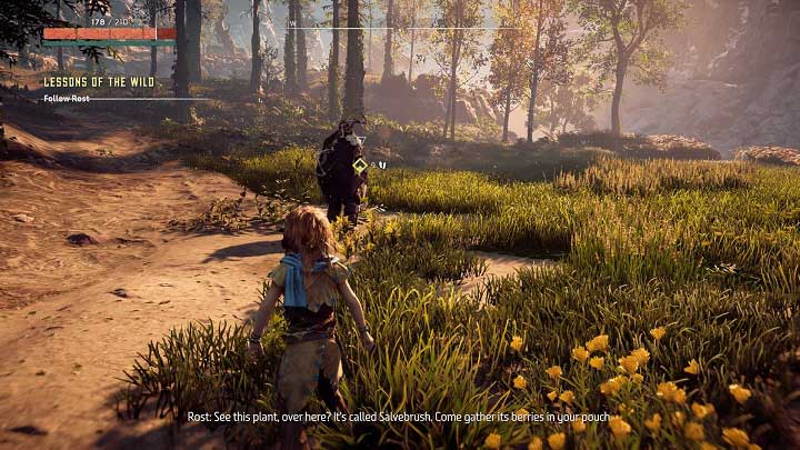 The quest begins in the area shown on the screenshot - Lessons of the Wild | Walkthrough - Main Missions | Walkthrough - Horizon Zero Dawn Game Guide