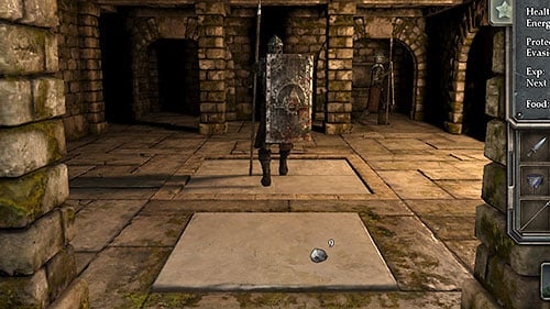 Don't worry, as there's a wonderful way to fight them - in the middle of the room there's a trap door activated by putting an item or just standing on it - Level 3: Pillars of Light - Walkthrough - Legend of Grimrock - Game Guide and Walkthrough