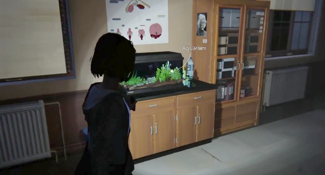 Photos Episode 3 Chaos Theory Life Is Strange Game Guide