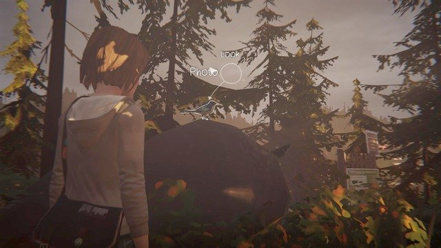 Youll find the last but one photo Chile running away from Chloes house - Photos | Episode 1: Chrysalis - Choices and decisions - Life is Strange Game Guide & Walkthrough