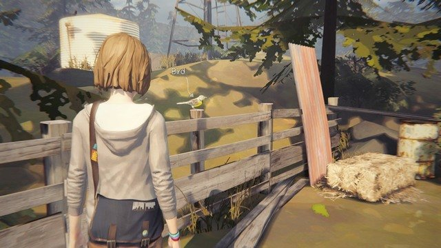 Photo #7 - Photos | Episode 4: Dark Room - Choices and decisions - Life is Strange Game Guide & Walkthrough