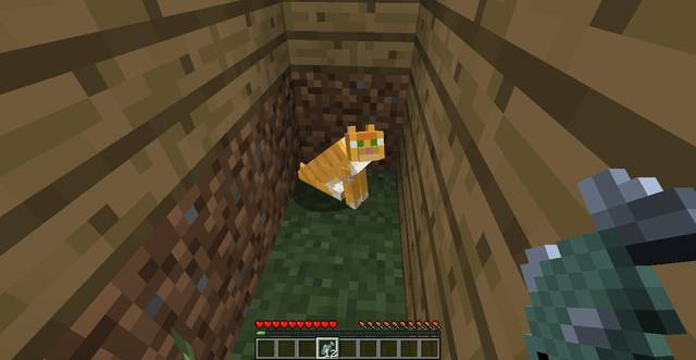 How to tame a dog/cat | General hints - Minecraft Game Guide