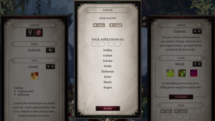 Just to remind you, tags do not reflect either the class or the attributes of a character, nor their role in the party - Tags | Party - Party - Divinity: Original Sin II Game Guide