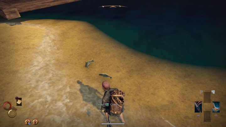 To fish, approach a place where you will notice a floating fishies. - Fishing in Outward - How to get the Fishing Harpoon? - FAQ - Outward Guide