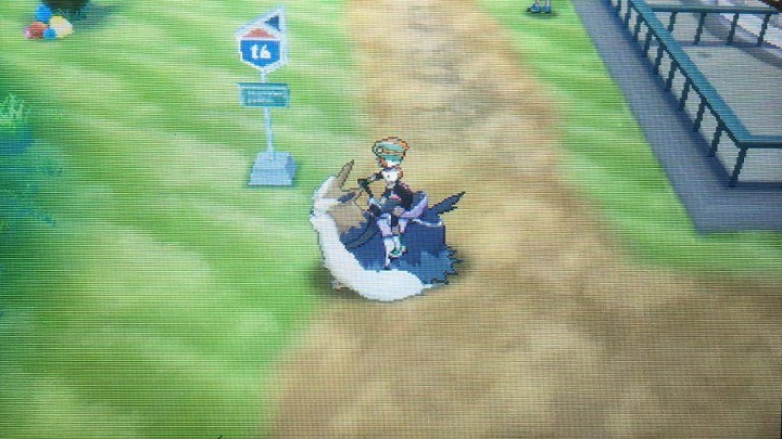 Route 15, Route 14 with Ghost Trial, Route 16 and Ula'ula Meadow