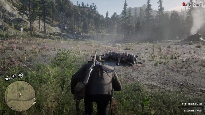The wolf will attack you if you approach it - Legendary Wolf in Red Dead Redemption 2 - Legendary Animals - Red Dead Redemption 2 Guide