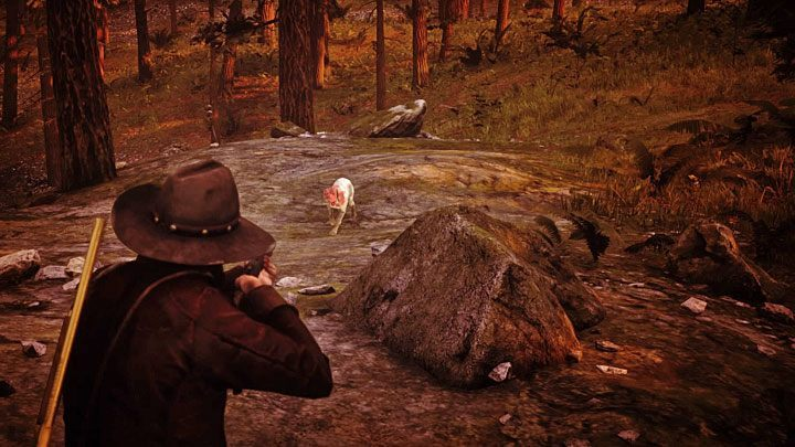 If you want to kill Otis, just eliminate every single bandit in the camp - Otis Skinner - Bounty Hunting Missions in RDR2 - Blackwater - Red Dead Redemption 2 Guide