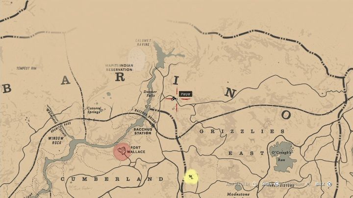 The cave is in Ambarino region, in the western part of it, near the river - The Strange Statues Puzzle in Red Dead Redemption 2 - Secrets and collectibles - Red Dead Redemption 2 Guide