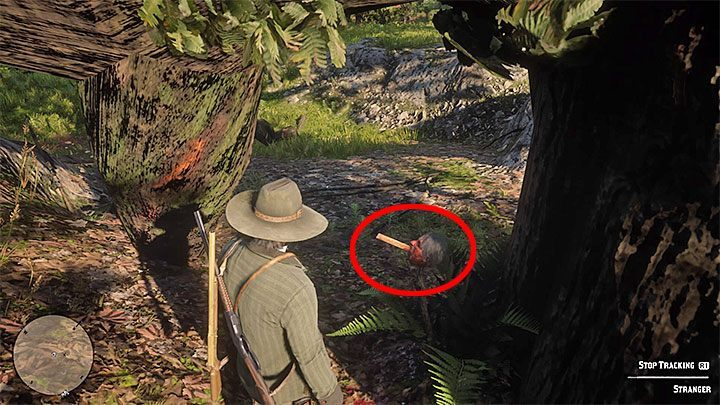 Walk around the tree and youll find the head cut and pierced with a piece of riddle left by the killer (Killer Clue Piece) - American Dreams in Red Dead Redemption 2 - Side quests - Red Dead Redemption 2 Guide