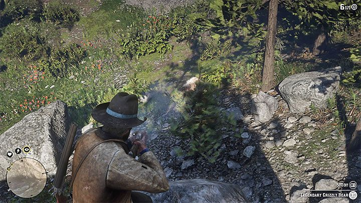 Dont be in a hurry, you dont want to be attacked by the bear prematurely - How to kill the legendary bear in RDR2? - FAQ - Red Dead Redemption 2 Guide