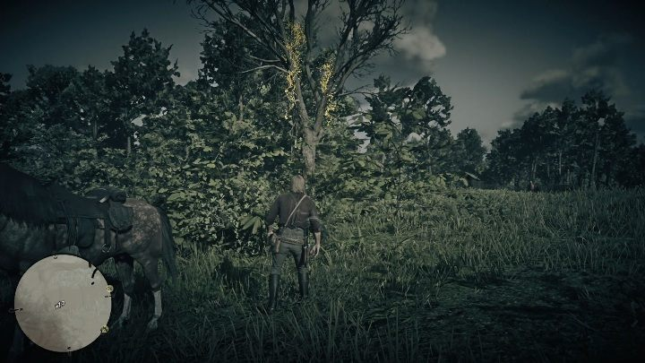 The first Dreamcatcher can be found in the northern part of Lemoyne - Dreamcatchers in RDR2 - Secrets and collectibles - Red Dead Redemption 2 Guide