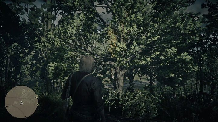 This Dreamcatcher is near New Hanover - Dreamcatchers in RDR2 - Secrets and collectibles - Red Dead Redemption 2 Guide