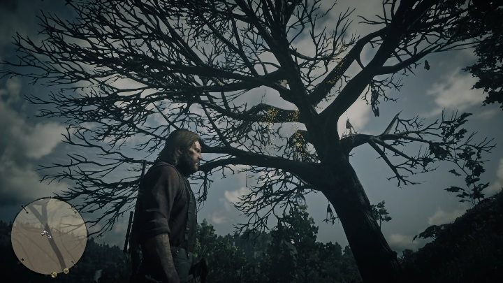 This Dreamcatcher can be found in Annesburg - Dreamcatchers in RDR2 - Secrets and collectibles - Red Dead Redemption 2 Guide
