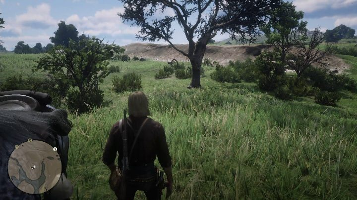 The last dreamcatcher can be found near Heartland Overflow - Dreamcatchers in RDR2 - Secrets and collectibles - Red Dead Redemption 2 Guide