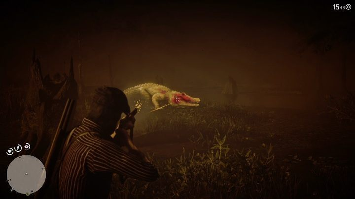 The Bull Gator is aggressive and highly dangerous - Legendary Bull Gator in Red Dead Redemption 2 - Legendary Animals - Red Dead Redemption 2 Guide