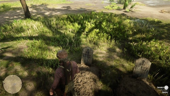 The graves are near the tree - Graves in Red Dead Redemption 2 - Secrets and collectibles - Red Dead Redemption 2 Guide