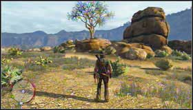 1 - Challenges - Treasure Hunter - Challenges - Red Dead Redemption - Game Guide and Walkthrough