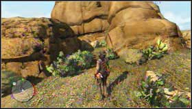When you will be at your destination, seek for the treasure near the huge rock - Challenges - Treasure Hunter - Challenges - Red Dead Redemption - Game Guide and Walkthrough