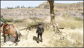 4 - Challenges - Treasure Hunter - Challenges - Red Dead Redemption - Game Guide and Walkthrough