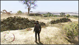 Find a tree with skulls and then get close to the river - Challenges - Treasure Hunter - Challenges - Red Dead Redemption - Game Guide and Walkthrough