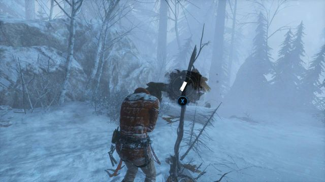 Use Laras instinct and you will notice three golden poles that point to the locations, where you will find resources - Find resources to build a fire and shelter | Siberian Wilderness - A Cold Welcome - Siberian Wilderness - A Cold Welcome - Rise of the Tomb Raider Game Guide & Walkthrough