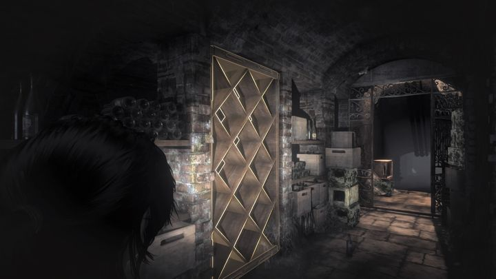Behind the wine shelf there is a panel hidden that unlocks hidden entrance to the vault. - Discover Lord Crofts secret | Blood Ties DLC Walkthrough - Walkthrough | Blood Ties DLC - Rise of the Tomb Raider Game Guide & Walkthrough