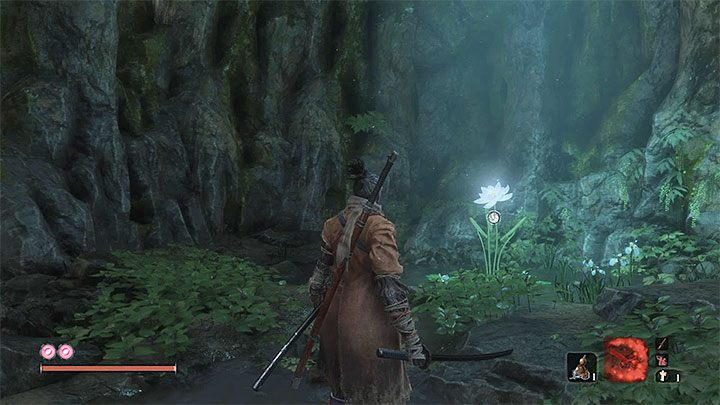 You can get Lotus of the Palace right after you defeat Guardian Ape in Sunken Valley - How to enter the Fountainhead Palace in Sekiro? - FAQ - Sekiro Guide and Walkthrough