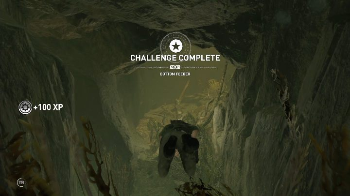 To get to the crypt you have to dive in a water reservoir and swim along the rocks - Kuwaq Yaku in Shadow of the Tomb Raider Game - Crypts - Shadow of the Tomb Raider Game Guide
