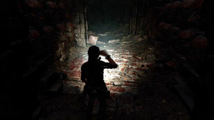 Going further you will find a fragment of cave with traps that you have to disarm - Peruvian Jungle Crypts in Shadow of the Tomb Raider Game - Crypts - Shadow of the Tomb Raider Game Guide