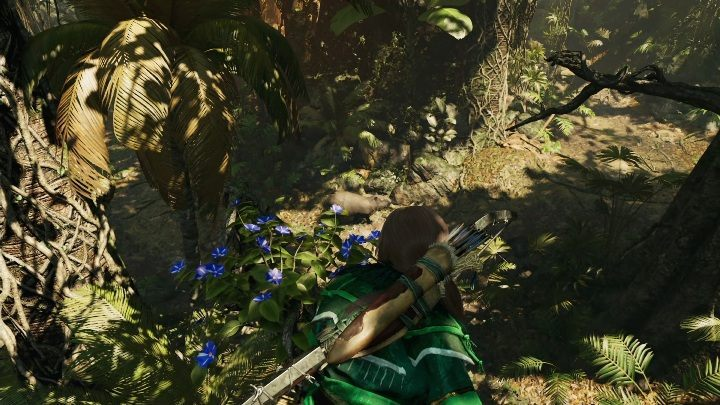 The flowers needed to complete this challenge grow exclusively on trees - Challenges in Peruvian Jungle | Secrets in Shadow of the Tomb Raider - Peruvian Jungle - Shadow of the Tomb Raider Game Guide