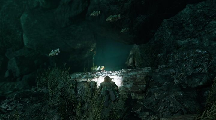 First survival cache (1) - its located underwater - Chests, relicts and documents | Secrects in Shadow of the Tomb Raider - Cozumel - Shadow of the Tomb Raider Game Guide