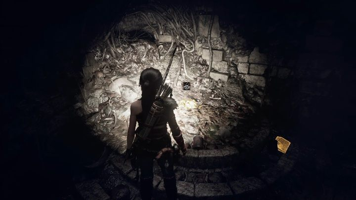 A Warning (4) - this document is near a water body - Documents and relics | Secrects in Shadow of the Tomb Raider - Cenote - Shadow of the Tomb Raider Game Guide