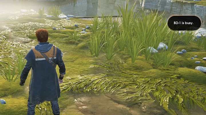 This is a minor problem that you may encounter while completing the first part of the first chapter on the Bogano planet - Star Wars Jedi Fallen Order Guide