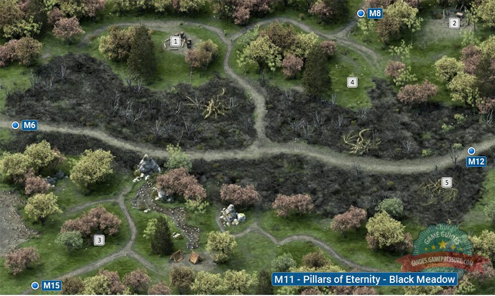Pillars of Eternity M11 - Black Meadow