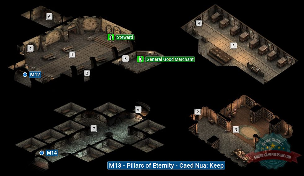 Pillars of Eternity M13 - Caed Nua: Keep