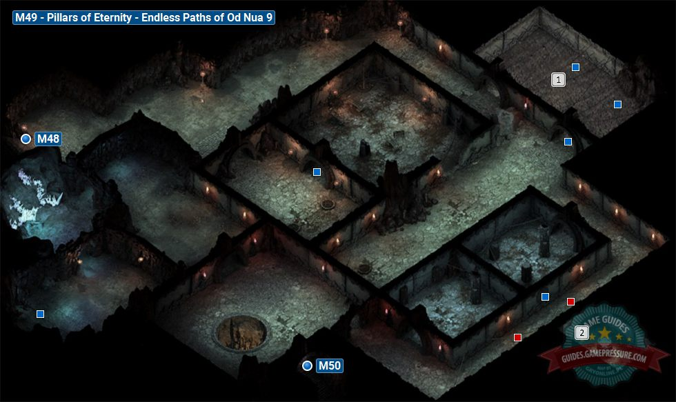 Pillars of Eternity M49 - Endless Paths of Od Nua 9