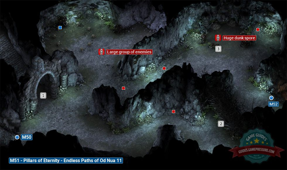 Pillars of Eternity M51 - Endless Paths of Od Nua 11