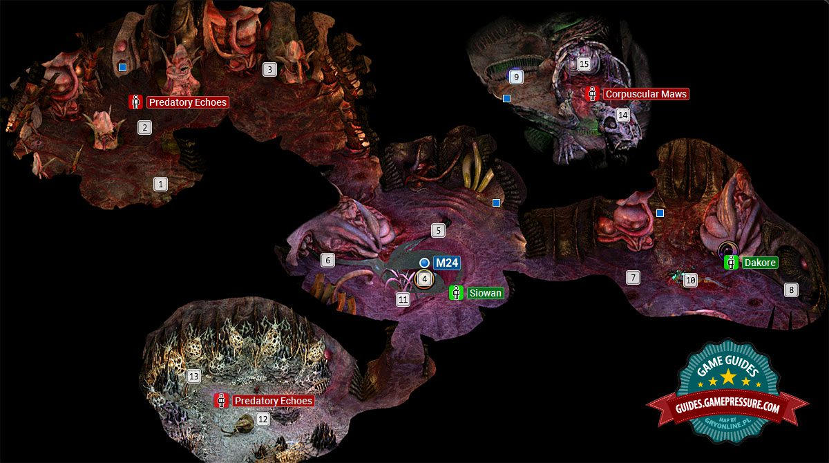 Torment: Tides of Numenera M23 - Bloom: The Gullet / Chamber of Bones