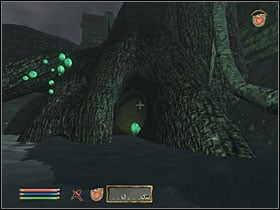 Go through Vitharn Stump and Virtharn Reservoir, all the way to Vitharn Keep - Side Quests: Other - Quests - The Elder Scrolls IV: Oblivion - Game Guide and Walkthrough