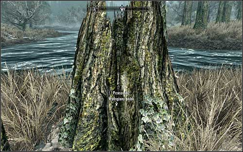 You should start looking for treasures only after youve learned locations of all four hiding places - Miscellaneous: Take the hidden treasure - The Dark Brotherhood quests - The Elder Scrolls V: Skyrim Game Guide