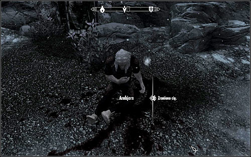 In order to reach the sanctuary entrance, you should follow the shore - The Cure for Madness - p. 1 - The Dark Brotherhood quests - The Elder Scrolls V: Skyrim Game Guide