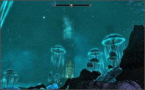 Go round the green sphere from the north and turn south after reaching the western edge of Blackreach - Obtaining the Elder Scroll | Elder Knowledge - Elder Knowledge - The Elder Scrolls V: Skyrim Game Guide