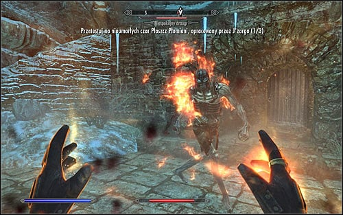 Now you just need to approach the monsters and wait for the spells effects (screen above) - JZargos Experiment - College of Winterhold quests - The Elder Scrolls V: Skyrim Game Guide